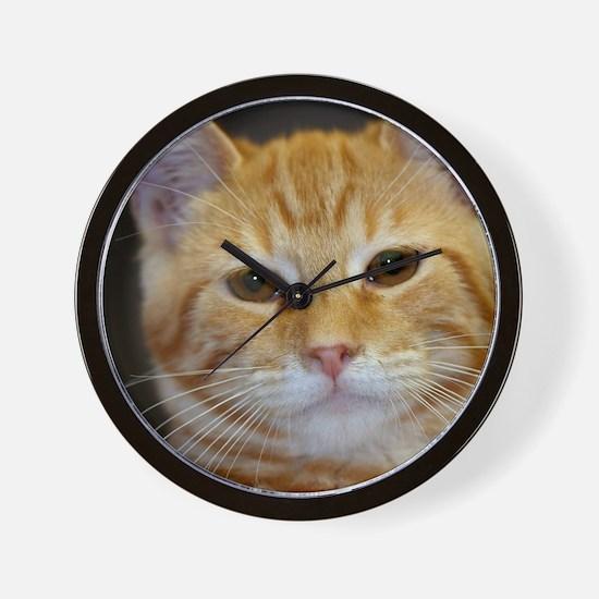 Unique Orange cat Wall Clock