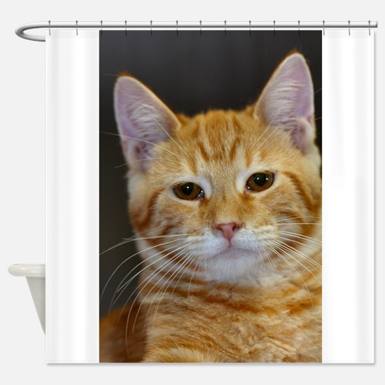 Cute Cute cat Shower Curtain