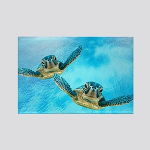 Baby Turtles in the Sea Magnets
