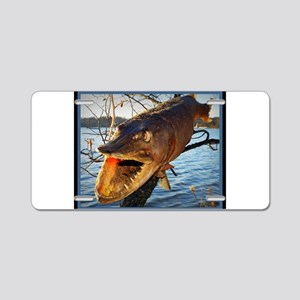 Fish in a Tree Aluminum License Plate