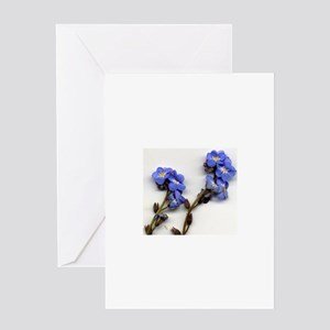 Forget me nots Greeting Cards
