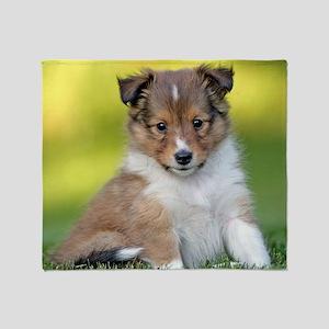 Sweet Sheltie puppy Throw Blanket