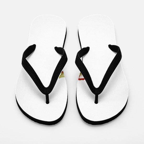 Pathfinder Flip Flops