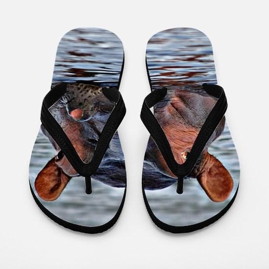 Cute Water animals Flip Flops