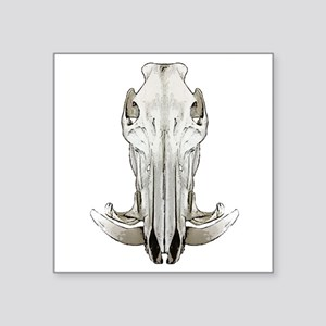 "Hog skull Square Sticker 3"" x 3"""