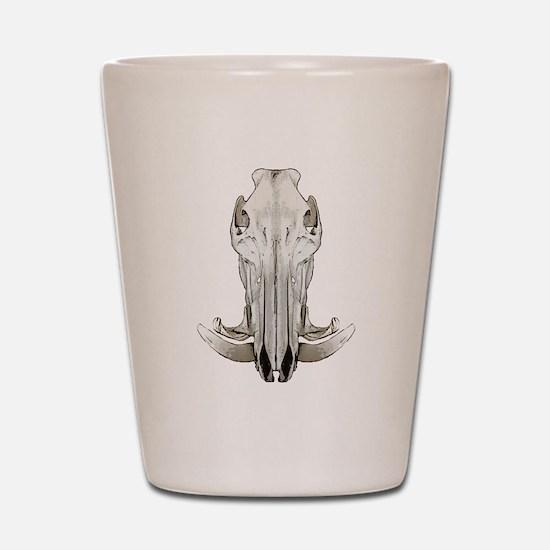 Hog skull Shot Glass