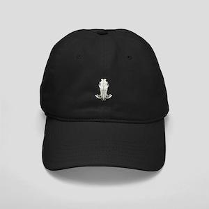 Hog skull Black Cap
