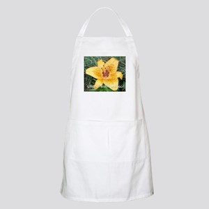 Grow with music! BBQ Apron