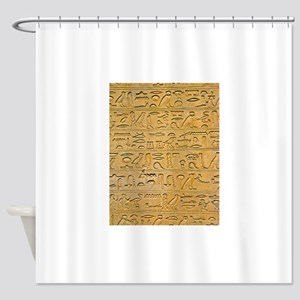 Hieroglyphics Count! Shower Curtain