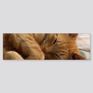 Sweet Dreams Bumper Sticker