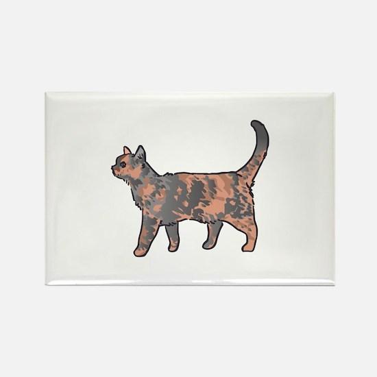 Tortoiseshell Cat Magnets