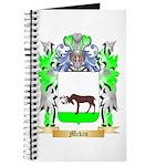 Mckin Journal