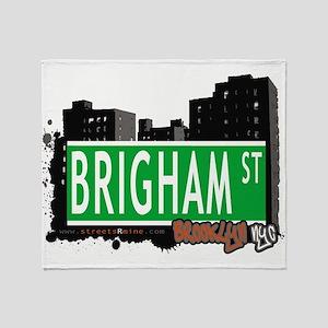 Brigham street, BROOKLYN, NYC Throw Blanket