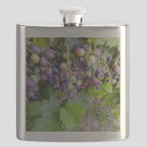 GRAPES 2 Flask