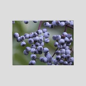 BLUEBERRIES 2 5'x7'Area Rug
