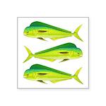 Mahi-Mahi Dolphinfish 3 Sticker