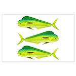 Mahi-Mahi Dolphinfish 3 Posters