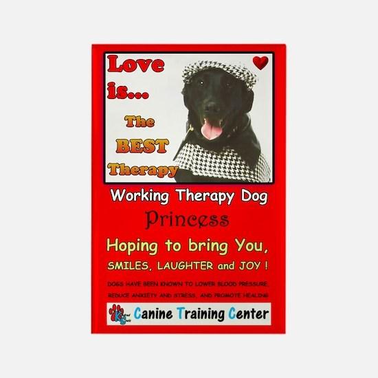 Custom Dog Gifts, Rectangle Magnet