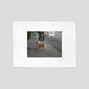 dog on leash at Oktoberfest 5'x7'Area Rug
