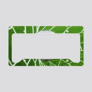 Football Goal License Plate Holder