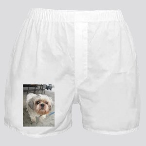 small dog at cafe Boxer Shorts