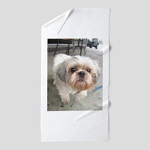 small dog at cafe Beach Towel