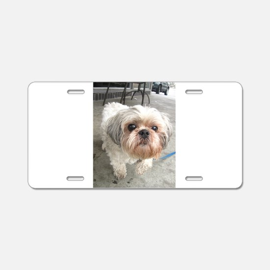 small dog at cafe Aluminum License Plate