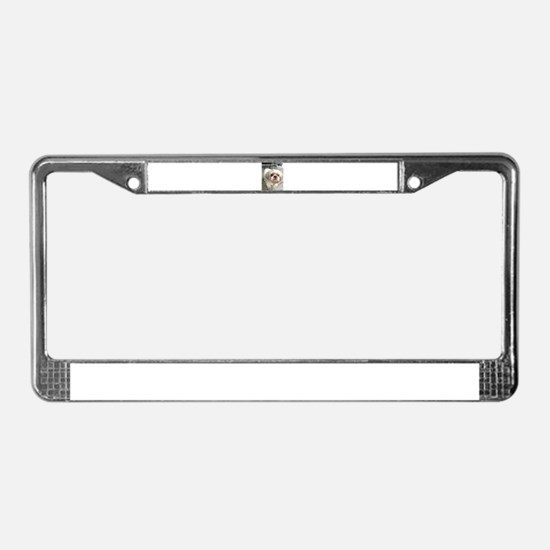 small dog at cafe License Plate Frame