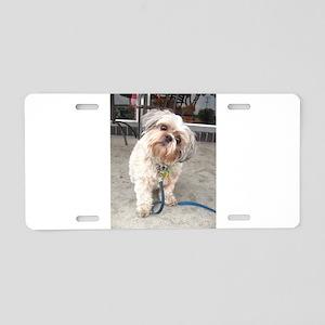 dog on leash at cafe Aluminum License Plate