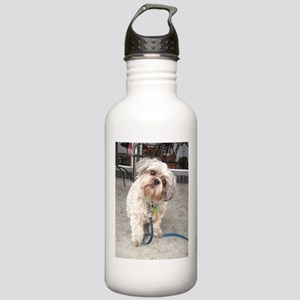 dog on leash at cafe Stainless Water Bottle 1.0L