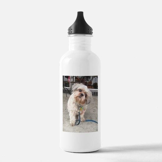 dog on leash at cafe Water Bottle