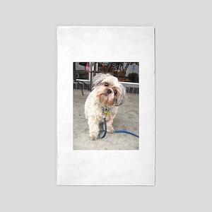 dog on leash at cafe Area Rug