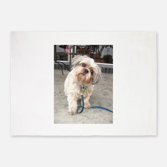 dog on leash at cafe 5'x7'Area Rug