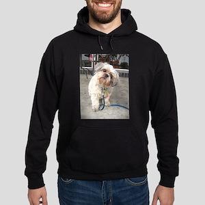 dog on leash at cafe Hoodie (dark)