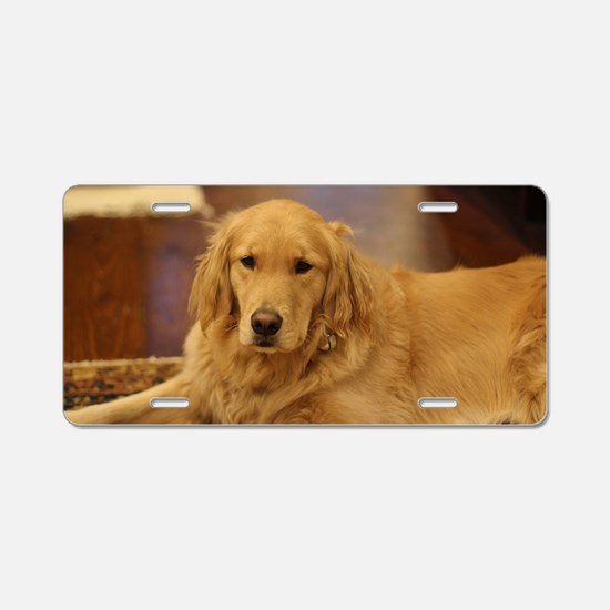 Cute Retriever Aluminum License Plate