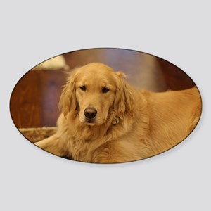 Nala the golden inside Sticker
