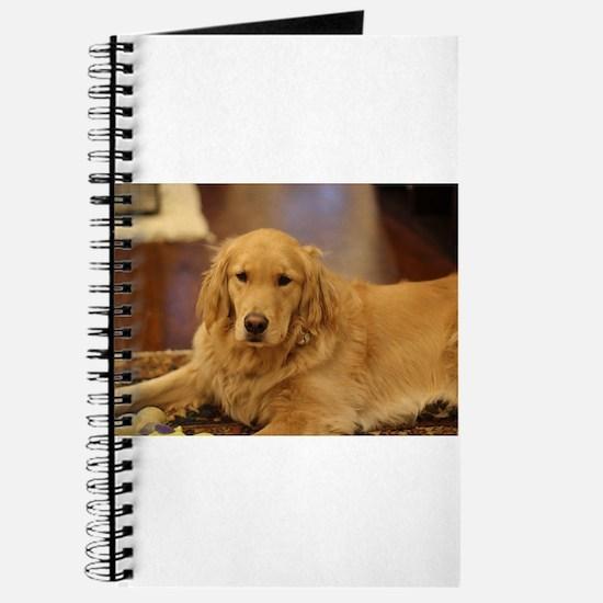 Nala the golden inside Journal