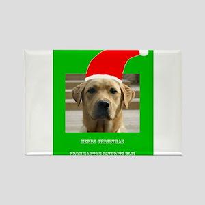 Santas Favorite Elf Labrador Penelope's Fa Magnets