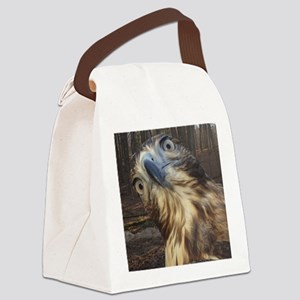 Red Tail Hawk Canvas Lunch Bag