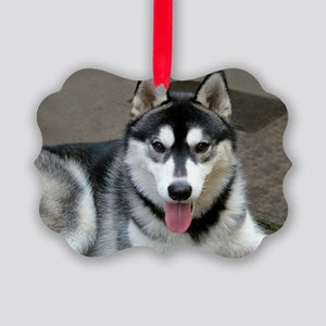 Alaskan Malamute Dog Picture Ornament