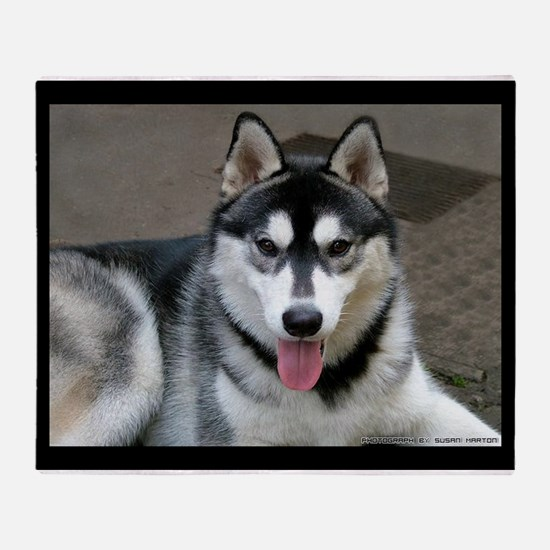 Alaskan Malamute Dog Throw Blanket