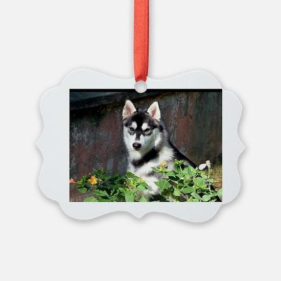 Alaskan Malamute Dog Outside Ornament