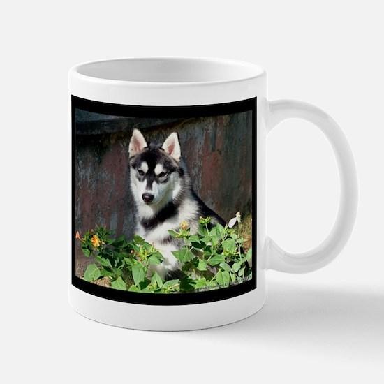 Alaskan Malamute Dog Outside Mugs