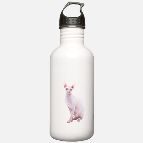 Pink Beauty Water Bottle