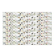 23 Amazon River Fish pattern Postcards (Package of