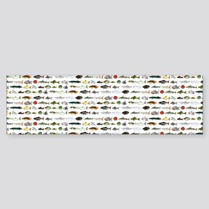 23 Amazon River Fish pattern Bumper Sticker