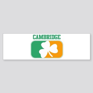 CAMBRIDGE irish Bumper Sticker