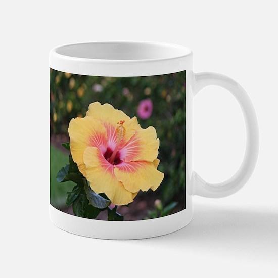 Pink yellow hibiscus flower Mugs
