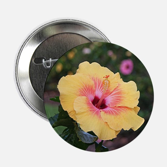 "Pink yellow hibiscus flower 2.25"" Button (10 pack)"