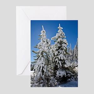 Tuolumne Snowtrees Greeting Cards (pk Of 20)